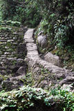 Incas steps Royalty Free Stock Photo