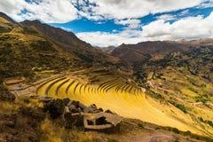 Incas terrasser i Pisac, sakral dal, Peru royaltyfri bild
