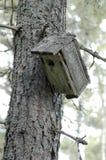 Incastramento-scatola Fotografia Stock