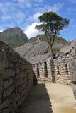 Incatrapiziums och terrasser på Machu Picchu fotografering för bildbyråer