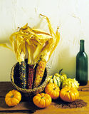 Incdian Corn Gourds & Wine Bottle. Incdian Corn Gourds with one Wine Bottle stock photography