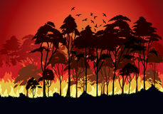 Incendi forestali Immagine Stock Libera da Diritti