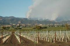 Incendi violenti del paese di vino Fotografia Stock