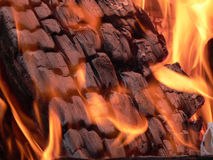 Incendie 3 de camp Image stock