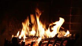 Incendie brûlant dans la cheminée clips vidéos