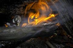 Incendie dans la forêt photo stock