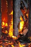Incendie dans un détail abandonné de maison Images libres de droits