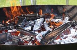 Incendie de barbecue. Photographie stock libre de droits