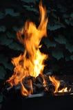 Incendie de bois Photo libre de droits