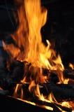 Incendie de bois Photographie stock libre de droits