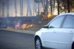 Incendie de Bush Photographie stock