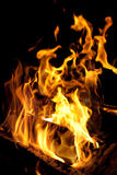 Incendie de camp Photos libres de droits