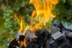 Incendie de camp photo stock