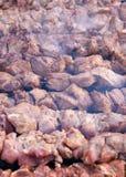 Incendie de charbon et viande fraîche Photos stock