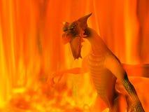 incendie de dragon Photo libre de droits