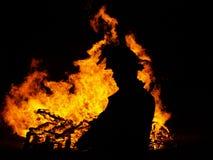 Incendie de fève Image stock
