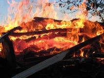 Incendie de forêt 8 image libre de droits