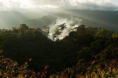Incendie de forêt avec le jour ensoleillé Image stock