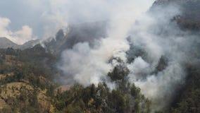 Incendie de forêt dans les montagnes banque de vidéos