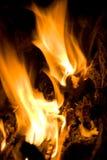 Incendie de langue Images stock