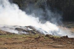 Incendie de paillis Photo libre de droits