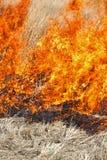 Incendie de prairie Image libre de droits
