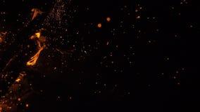 Incendie en nature Bokeh du feu banque de vidéos