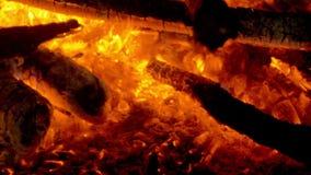 Incendie en nature Bokeh du feu clips vidéos