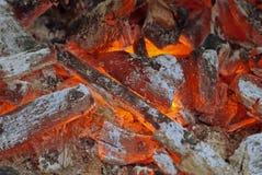 Incendie et charbon de bois mourants photographie stock libre de droits