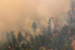 Incendie excessif Image libre de droits