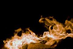 Incendie, flammes d'amour Photographie stock libre de droits