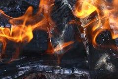 Incendie pour faire cuire la viande Photographie stock