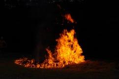 Incendie sauvage photo libre de droits