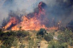 Incendies de forêt d'Athènes Images libres de droits