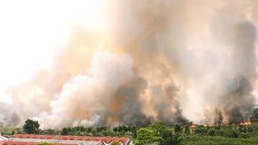 Incendies de forêt dans la ville sur une surabondance chaude Sapeur-pompier aidé à s'empresser d'empêcher le feu écarté au villag banque de vidéos