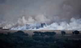 Incendio di arbusti Australia 2 Fotografia Stock
