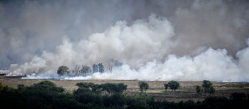 Incendio di arbusti Australia 3 Fotografie Stock