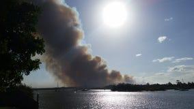 Incendio di arbusti del northshore di Noosa Fotografie Stock Libere da Diritti