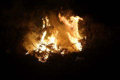 Incendio di arbusti vicino su alla notte Fotografie Stock Libere da Diritti