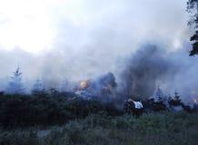 Forest Fire imagen de archivo libre de regalías