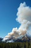 Incendio forestal Imágenes de archivo libres de regalías