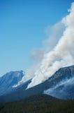 Incendio forestal Fotografía de archivo libre de regalías