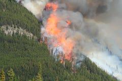 Incendio forestal en las montañas rocosas 02 Imagenes de archivo
