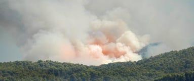 Incendio forestale mediterraneo Fotografie Stock Libere da Diritti