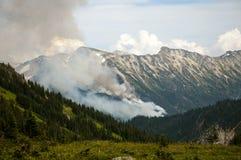 Incendio forestale nella valle, Pemberton Fotografie Stock Libere da Diritti