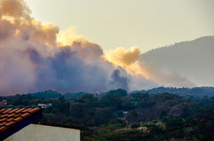 Incendio forestale in passo del Bosque, Cuernavaca, Morelos, Messico Fotografia Stock Libera da Diritti