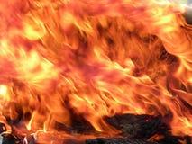 Incendio reale Immagini Stock
