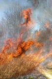 Incendio violento Fotografia Stock Libera da Diritti