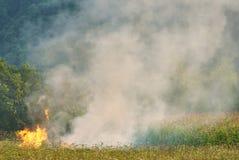 Incendio violento al prato della campagna Fotografie Stock Libere da Diritti