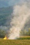 Incendio violento al prato della campagna Fotografia Stock